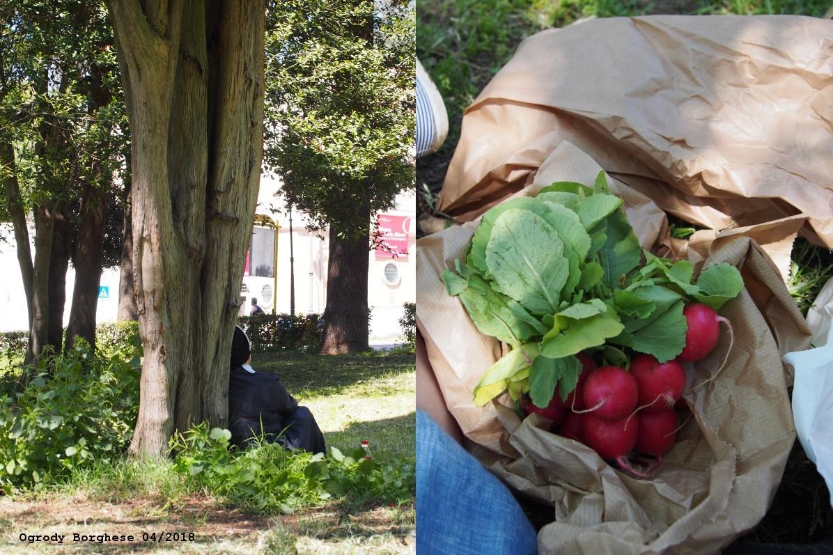 Wiosenny piknik w Rzymie