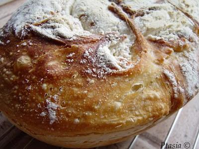 Chleb bez wyrabiania (tzw. no knead bread)
